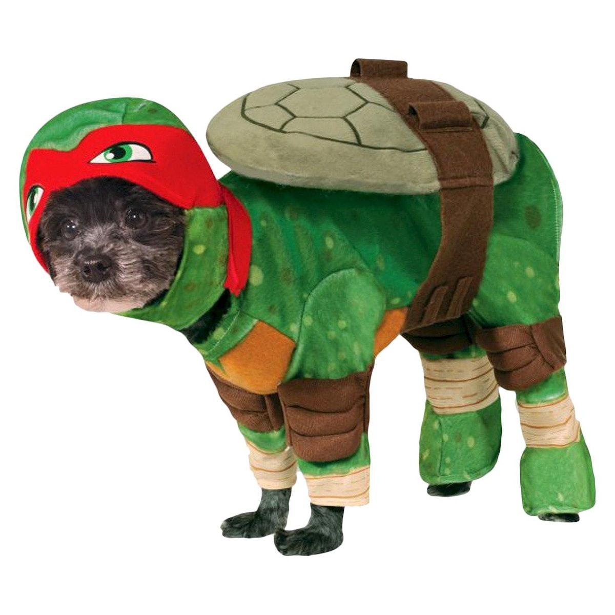 Teenage Mutant Ninja Turtles Raphael Dog Costume - Green