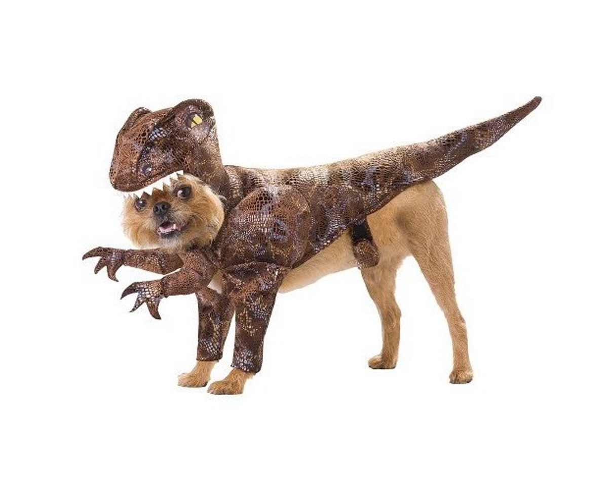 Raptor Pet Dog Costume - Brown