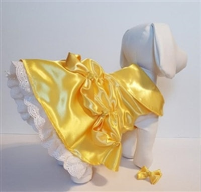 Belle Dog Costume