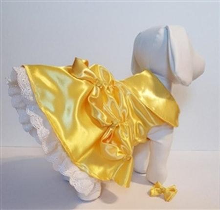 Belle Dog Costume