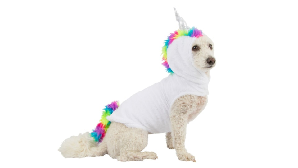 6d9d00cc5f8 Best Unicorn Halloween 2018 Costumes For The Whole Family