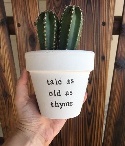 Tale As Old As Thyme Pot
