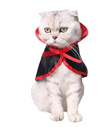 Halloween Pet Cape