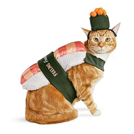 Bootique Sushi Roll Cat Costume