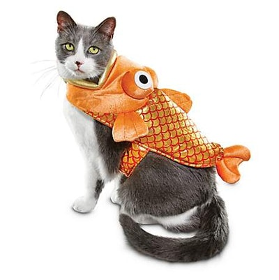 Bootique Catch of the Day Fish Cat Costume