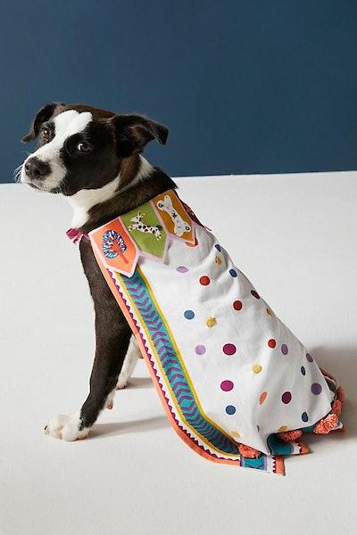 Dress-Up Pup Cape