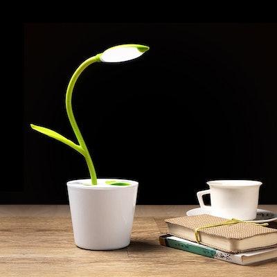 iEGrow Flexible USB Touch Desk Lamp