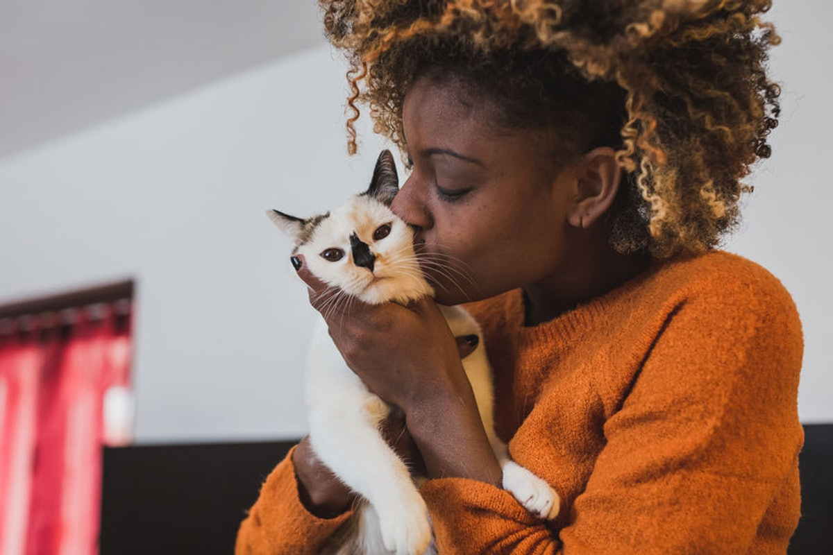 Your Cat's Personality Is Likely To Match Yours, According To This New Study
