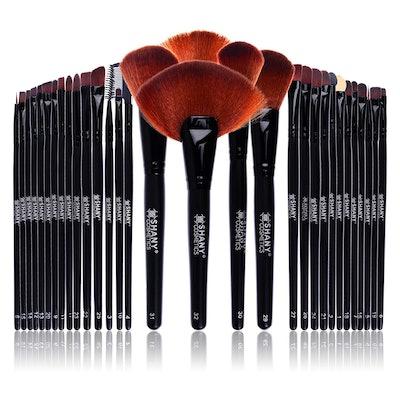 Shany Professional Brush Set