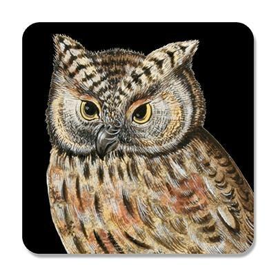 Scops Owl Coaster