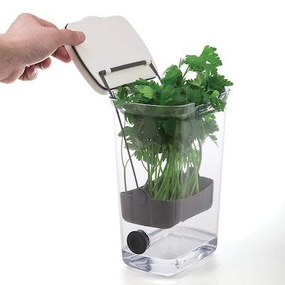 Prepworks Herb Keeper