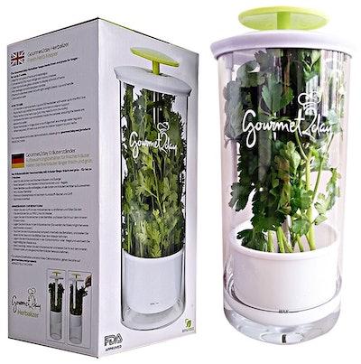 Gourmet2day Glass Herb Keeper