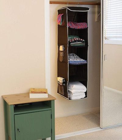 Simple Houseware Hanging Closet Organizer