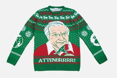 David Attenborough Christmas Jumper