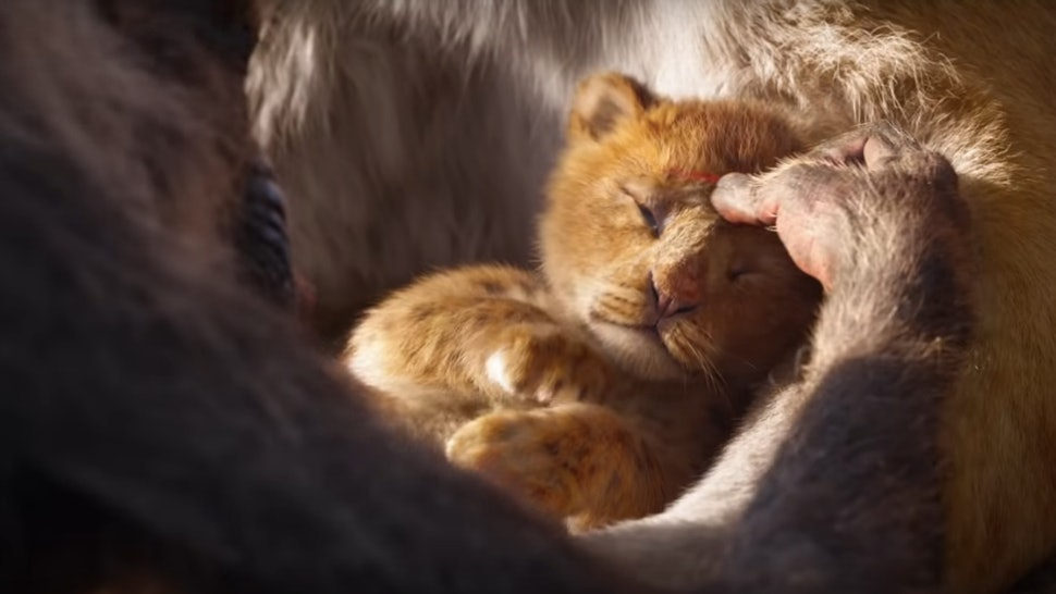 The Live Action Lion King Trailer Recreates A Iconic