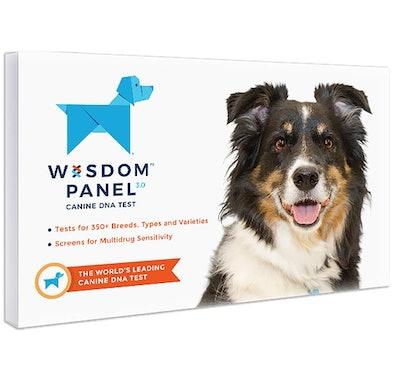 Wisdom Panel 3.0 Breed Identification DNA Test Kit
