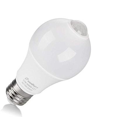 Zanflare Motion Sensor Light Bulb
