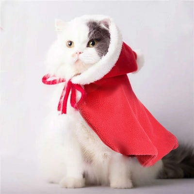 Legendog Cat Christmas Costume