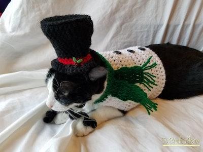 Snowman Cat Outfit