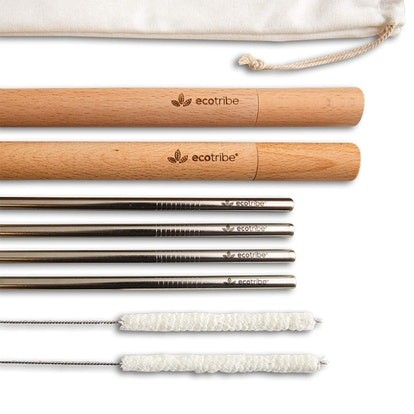 Ecotribe Stainless Steel Reusable Straw Set