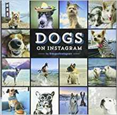Dogs On Instagram, Hardcover Book