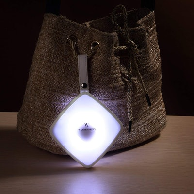 Wasserstein Square Handbag Light