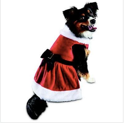 Mrs. Claus Dog Costume