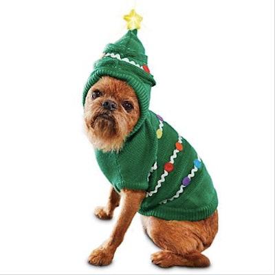 Light-Up Royal Fir Dog Hoodie