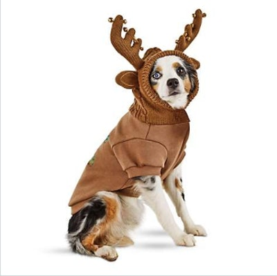 Under the Mistletoe Reindeer Dog Hoodie