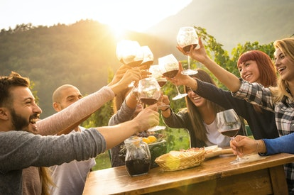 "A group of friends gathered around a wooden table clink their wine glasses together to ""cheers."""
