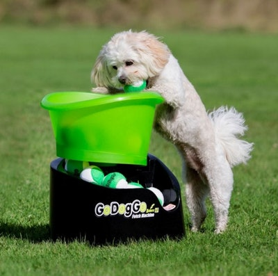 GoDogGo G4 Automatic Dog Ball Thrower