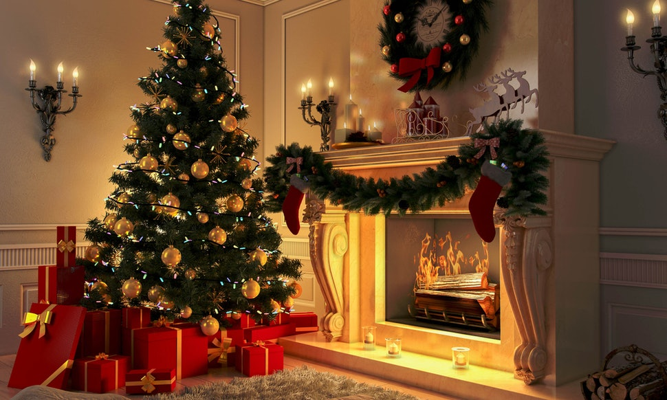 How Often Should You Water A Christmas Tree? Here\'s How To Make Sure ...
