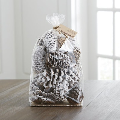 Small White Flocked Sugar Pine Cones