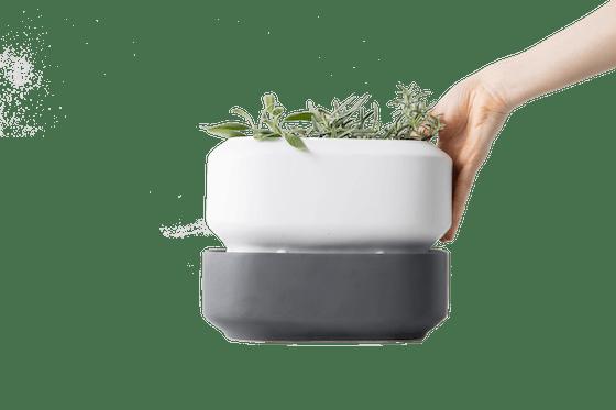 Chef'n Self Watering Herb Pot