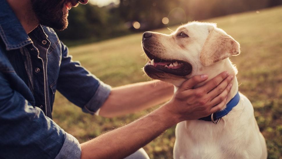 man holding his dog.