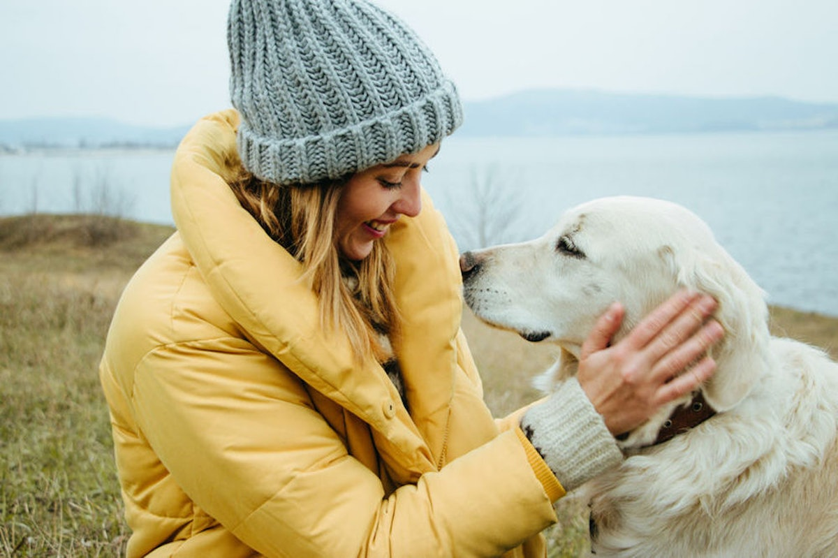 Here's How To Get Your Dog To Stop Barking So Much At Every Little Thing, According To Experts