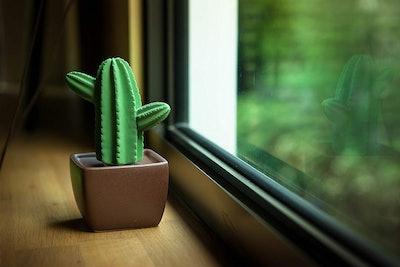 Easy_Company Cactus Essential Oil Diffuser