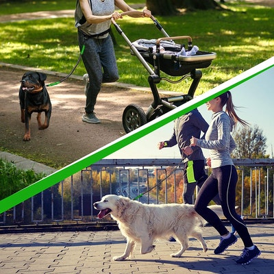 SparklyPets Hands-Free Dog Leash
