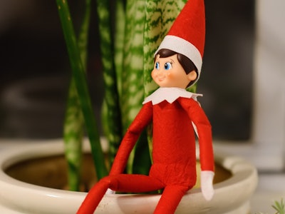 an elf on the shelf doll on a potted plant