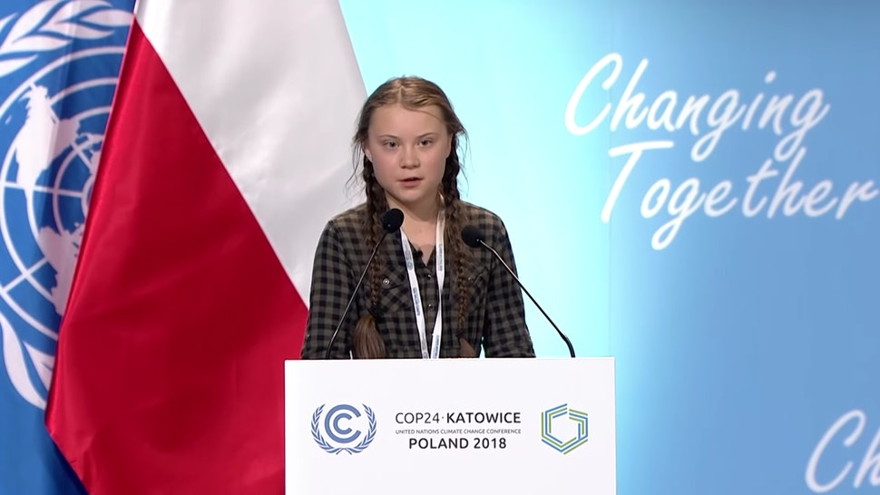 Image result for young climate activist cop24