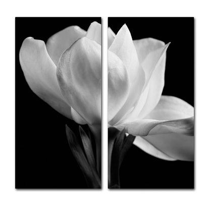 'Gardenia' 2-Part Decorative Wall Art Set