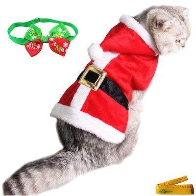 Wix BBQT Cat Santa