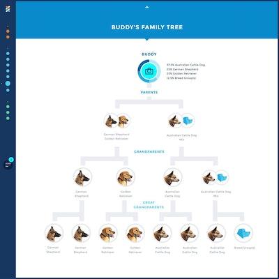 Wisdom Panel 3.0 Breed Identification Doggy DNA Test