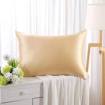 ZIMASILK 100% Silk Pillow Case