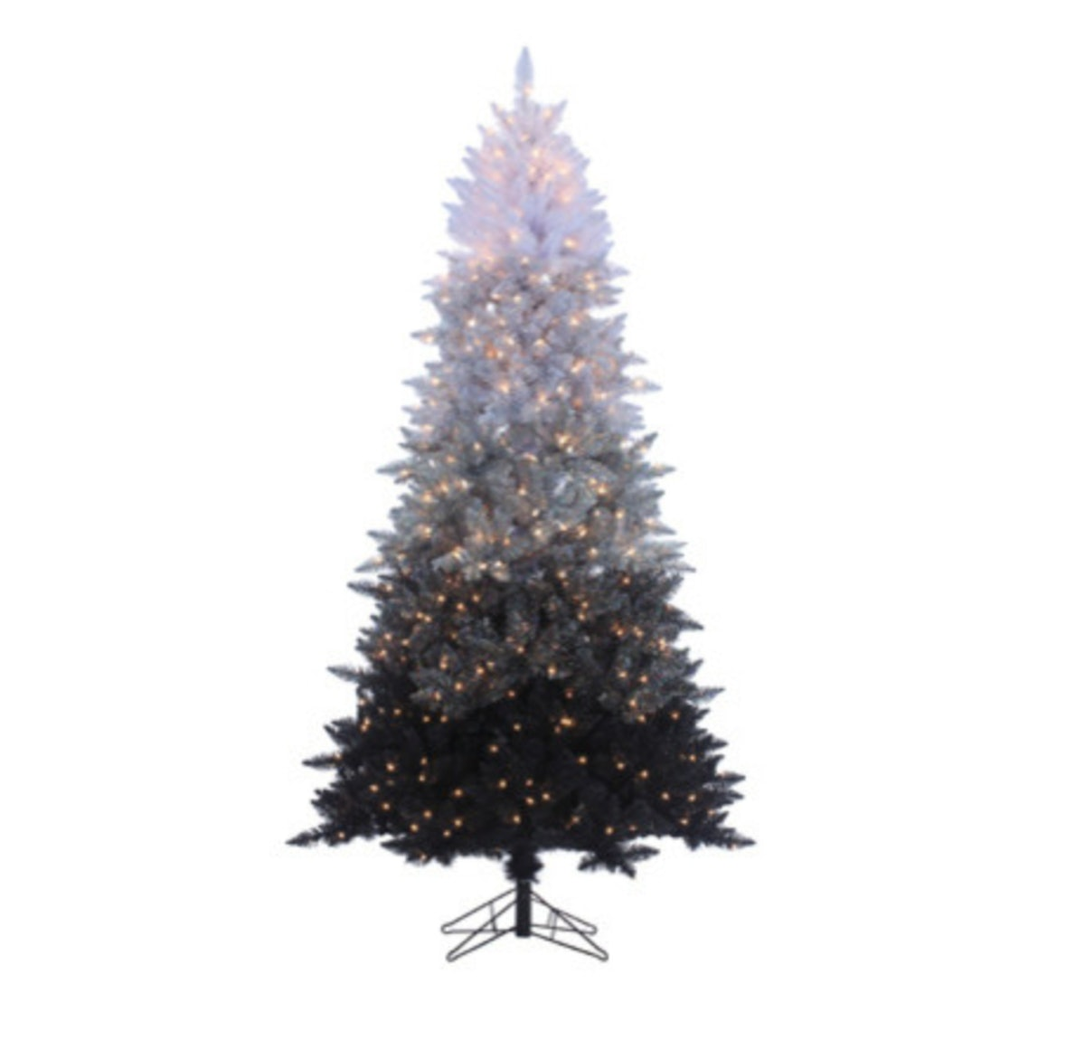 Vintage Black Ombre Spruce With 600 Clear Lights