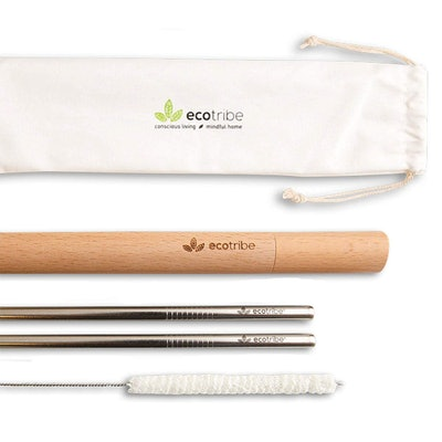 Ecotribe Stainless Steel Reusable Straw Set (Set of 2)