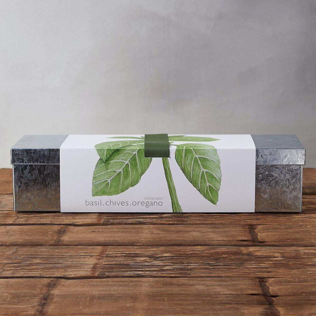Windowsill Kit, Culinary Herbs
