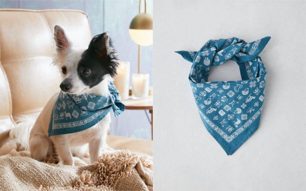 This Urban Outfitters Pet Bandana Supports The PSPCA & Is Super Cute