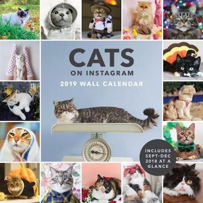 Cats On Instagram Wall Calendar
