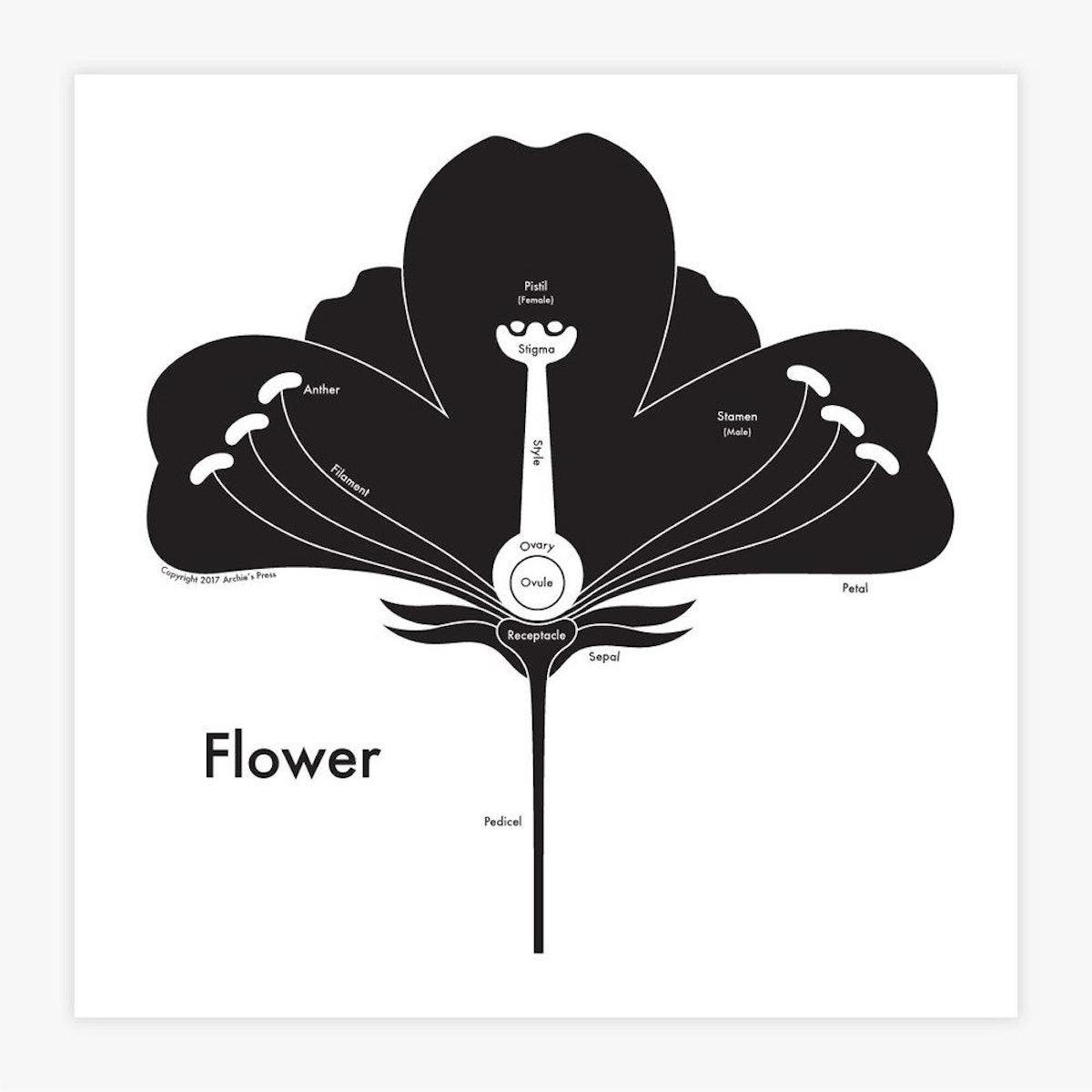 Flower Letterpress Print